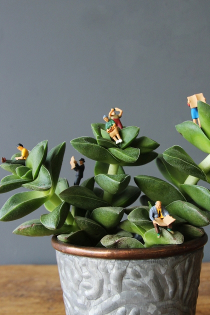 Tiny (And A Little Bit Rude) Terrarium Figures