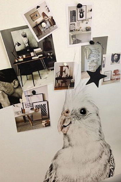 Magnet-Friendly Magnetic Wallpaper - Parakeet - 2 Sizes Available