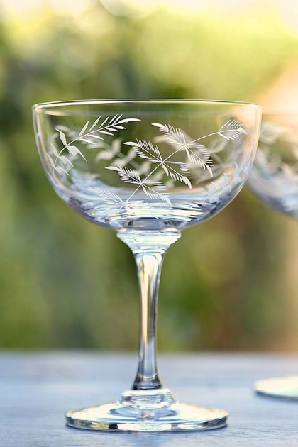 Set Of 6 Vintage Style Crystal Champagne Saucers - Ferns