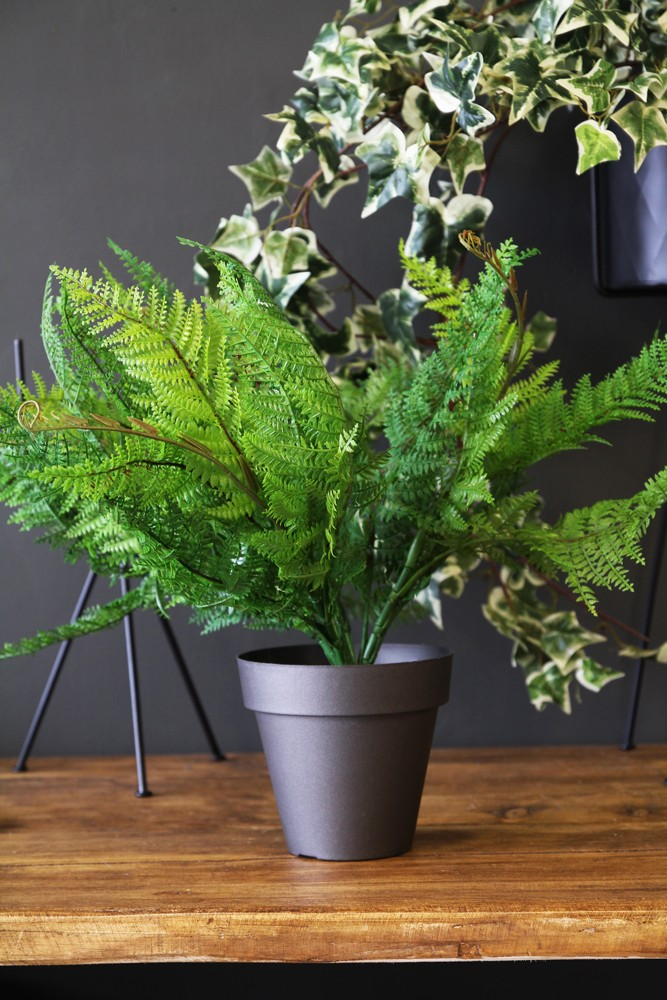 artificial faux plants - all display - home accessories Faux Indoor Plants