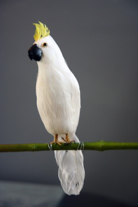 Beautiful White Cockatoo - A Fabulous Artificial Bird