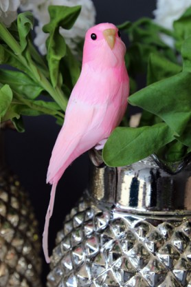Pink Budgie - A Fabulous Artificial Bird