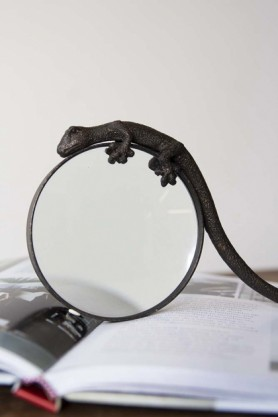 Gecko Magnifying Glass