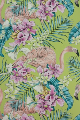 Matthew Williamson - Flamingo Club Wallpaper