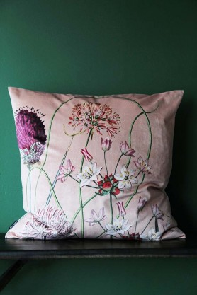 Allium Cushion - Pink