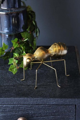 Brass Ant Ornament