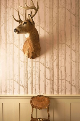 Cole & Son -  Whimsical Collection - Woods Wallpaper - 3 Colours Available