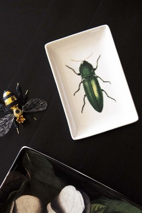 Green Beetle Trinket Tray