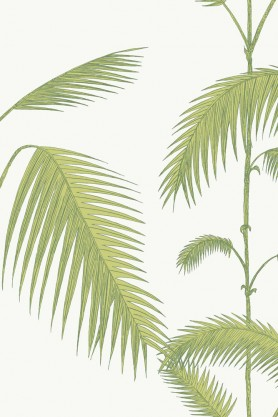 Cole & Son - Contemporary Restyled - Palm - Green on White