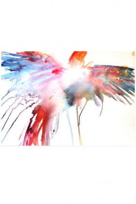Soaring Parrot Art Print By Emma Kaufmann
