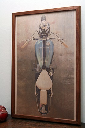 Triumph Insect' Fine Art Print on Wood by David Corbett