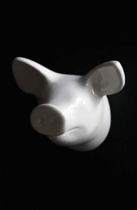 Zoo Dear Animals Coat Hook - White Pig