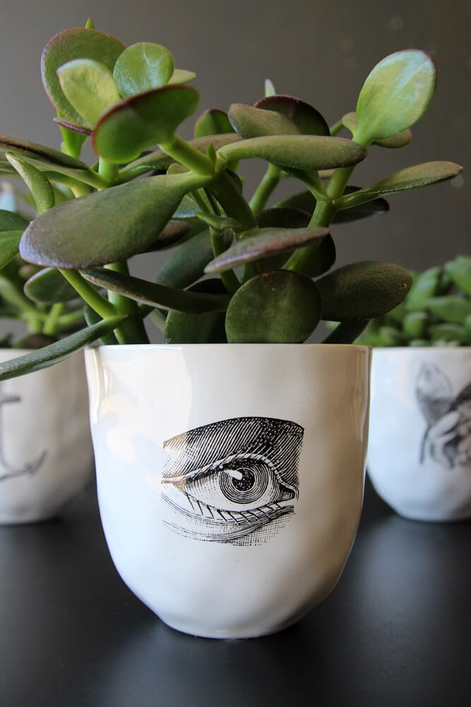 ceramic_eye_cup_white_black_lowres