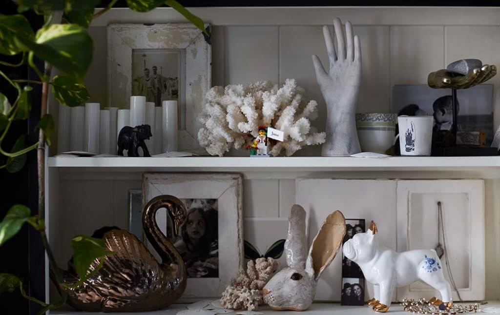 close-up image of display pieces in a cabinet of curiosities