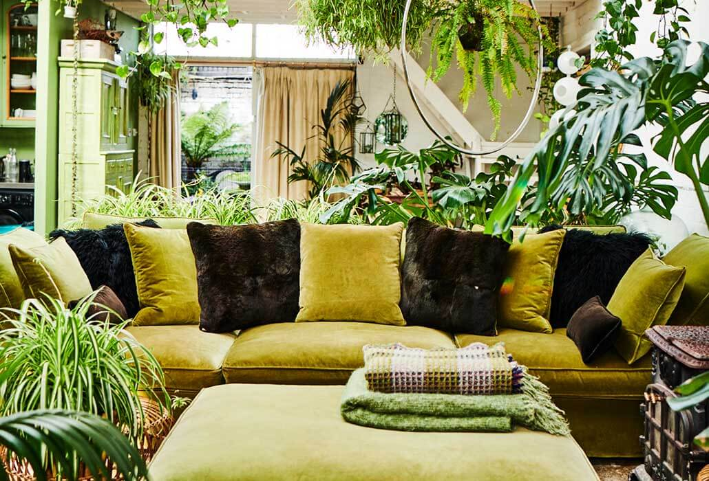 green-sofa-with-cushions-green-plants